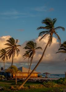 Sunrise at Nisbet Plantation, Nevis WI