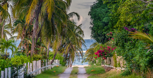 (c) Tina Thuell Photography - road to Nisbet Plantation's Beach - untitled-2274