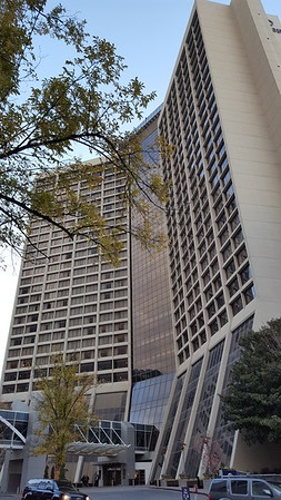 Hilton family hotels