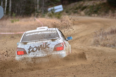 Rally of the Tall Pines 2012