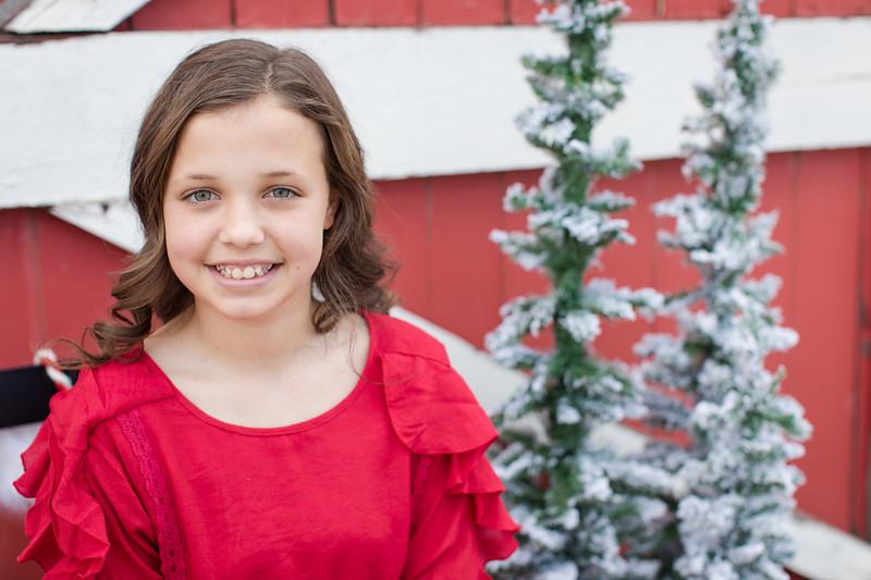 Houghton Christmas Mini-9