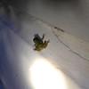 Backyard tree frog, September 24th, 2013