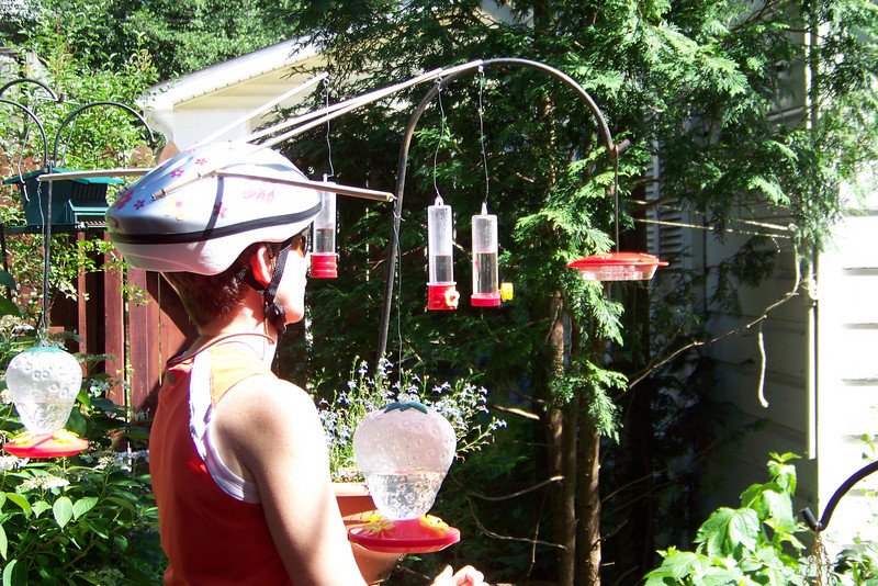 Patti's hoping to attract our female hummingbird by taking advantage of her being a Creature of Habit.