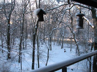 Overlooking Riley Creek from upper deck.