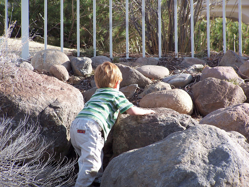 """Bradley, Madeline, and Jacob had fun playing on the rocks and in the """"woods"""" in our back yard."""