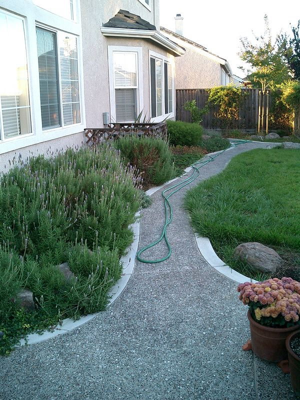 Small pathway with custom edging