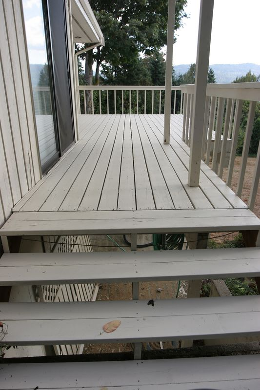 Here's another shot of the deck.