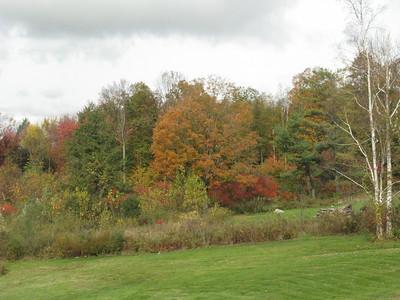 Fall 10/12/2011