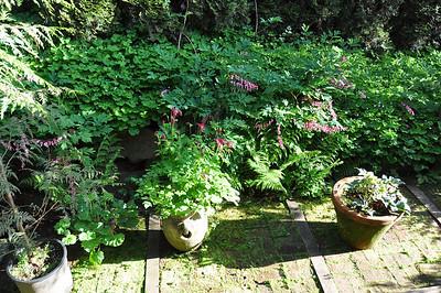 Garden (2013)