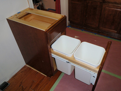 Cabinet with bins for trash and recycle