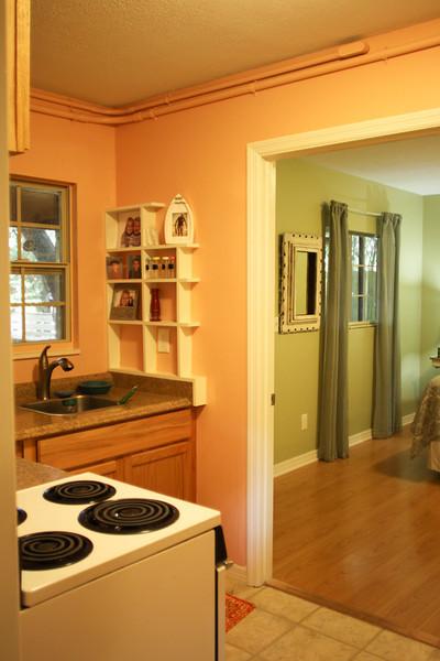 apartment mini kitchen