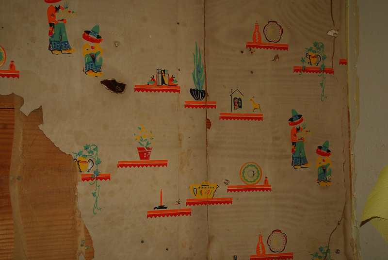 10/22/12  This is the wallpaper they found under that huge ventahood.  Cute, huh?