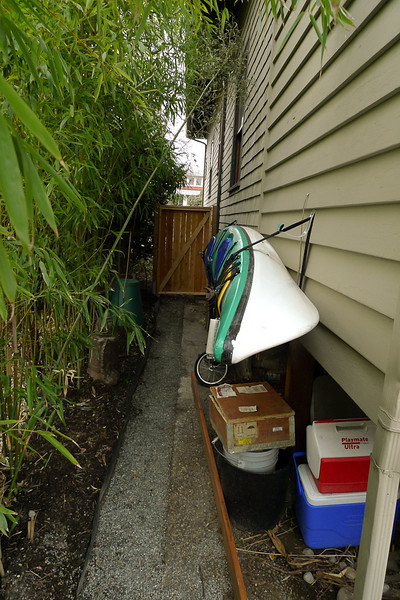 Skinny side yard with bamboo instead of fencing.