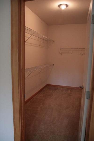 Closet-zilla