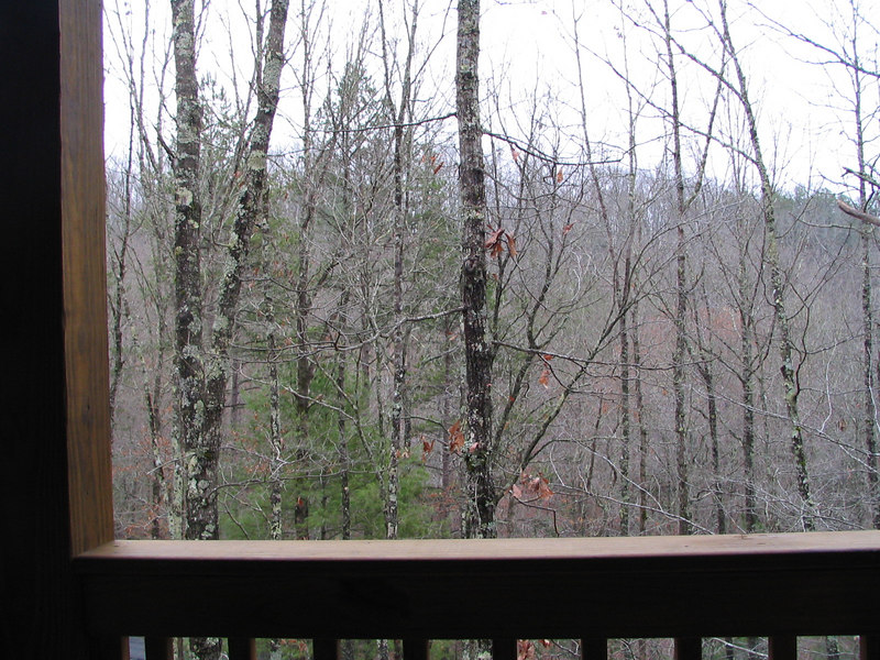 This is the view from the deck.
