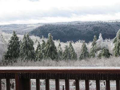 Snow - 12/12/2008