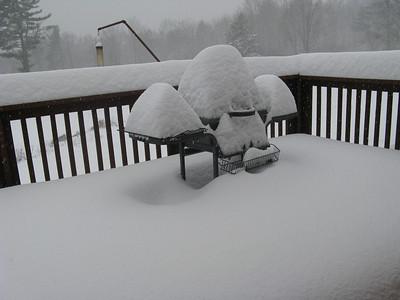 Snow - 12/21/2008