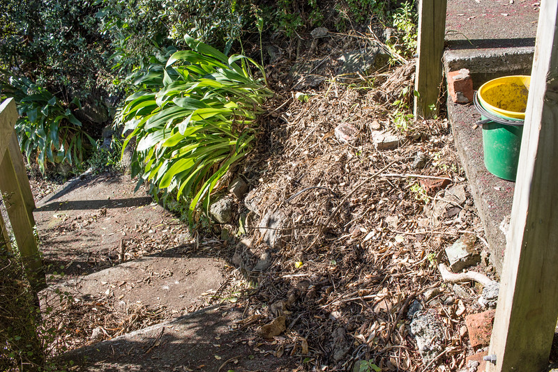 This is the section that started it all, we wanted to get rid of the Agapanthus down this path. Once pulling most of them out I realised we needed a bit of a wall to hold the garden in. So tomorrow I'll attack this with stones and mortar.