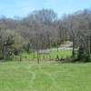 Looking across the field toward the road; fence in the background along the road is our road frontage and driveway.