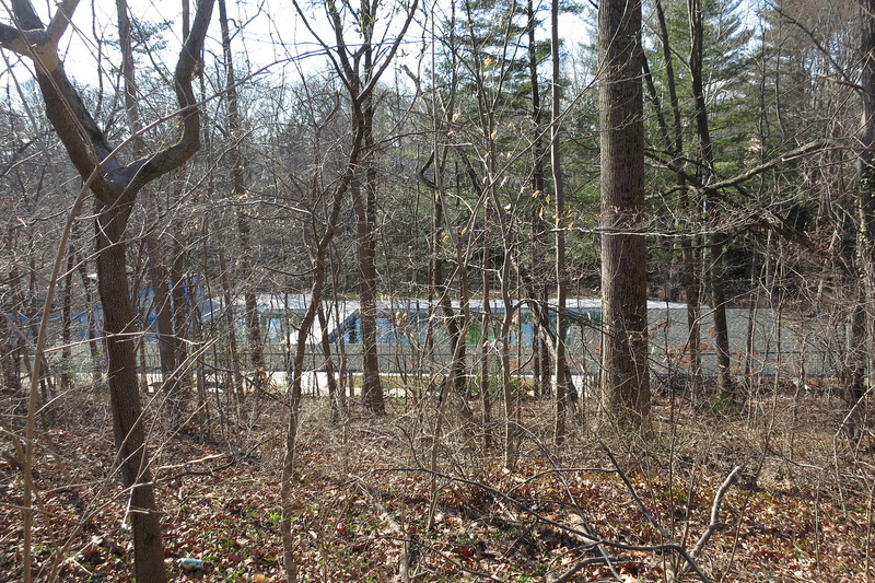 public pool behind forest lot