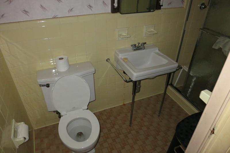 master (ellen's) bathroom