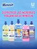 MIMOSÍN concentrated fabric softeners by UNILEVER (Aloe Vera - Caricias - Azul VItal - Mousel - Lavanda) 2015 Spain 'Disfruta de las increíbles fragancias de Mimosín'