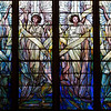 "The Second Reformed Church The Angels of Praise Window <br><br> From <a href=""http://www.secondreformed.org/stainedglass"">the church website:</a> <br><br> ""This window is truly magnificent! It is our largest window. It was installed as the church was being built and was so listed in the dedication services booklet of September 19, 1909. Tiffany has created a feeling of upward flight. The colors graduate from deep blues at the bottom through lighter shades of color toward the top. Vertical lines are predominant. This window is also referred to as ""The Four Elements""."" <br><br> This window was exhibited at the 1893 International Exhibition in Chicago. <br><br> Louis Comfort Tiffany (1848-1933) was one of America's most acclaimed artists and is most associated with the Art Nouveau and Aesthetic movements according to <a href=""http://en.wikipedia.org/wiki/Louis_Comfort_Tiffany"">Wikipedia.</a> He focused in the decorative arts and is best known for his work in stained glass. He was the son of Charles Lewis Tiffany (1812-1902), founder of Tiffany & Company. Lewis chose to pursue his own artistic interests rather than joining the family business.  <br><br> He began his career as a painter and traveled extensively through Europe. In the late 1870s, Tiffany turned his attention to decorative arts and interiors. In 1881, he did the interior design of the Mark Twain House in Hartford Connecticut. His most notable work was in 1862 when President Chester Arthur refused to move into the White House until it had been resorted, according to Wikipedia. He commissioned Tiffany, who had begun to make a name for himself for interior design work, to redo the state rooms. Tiffany worked on the East Room, Blue Room, Red Room, the State Dining Room, and the Entrance Hall.  <br><br> From  <a href=""http://www.metmuseum.org/toah/hd/tiff/hd_tiff.htm"">The Metropolitan Museum website:</a> ""By late 1892 or early 1893, Tiffany built a glasshouse in Corona, Queens, New York, and, with Arthur Nash, a skilled glassworker from Stourbridge, England, his furnaces developed a method whereby different colors were blended together in the molten state, achieving subtle effects of shading and texture. Recalling the Old English word fabrile (hand-wrought), Tiffany named the blown glass from his furnaces Favrile, a trademark that signified glass of hand-made and unique quality."" <br><br> ""Of all of Tiffany's artistic endeavors, leaded-glass brought him the greatest recognition. Tiffany and his early rival, John La Farge, revolutionized the look of stained glass, which had remained essentially unchanged since medieval times when craftsmen utilized flat panes of white and colored glass with details painted with glass paints before firing and leading. Tiffany and La Farge experimented with new types of glass and achieved a more varied palette with richer hues and greater density. By 1881, each had patented an opalescent glass, a unique American phenomenon that featured a milky, opaque, and sometimes rainbow-hued appearance with the introduction of light. Internally colored with variegated shades of the same or different hues, Tiffany's Favrile glass enabled craftsmen to substitute random tonal gradations, lines, textures, and densities inherent in the material itself for pictorial details."" <br><br> At its peak, his factory employed over 300 artisans. He was appointed as art director at Tiffany & Company upon his father's death in 1902. <br><br> Tiffany lived during the Gilded Age, a period of rapid church expansion; one source reports that there were 4,000 churches under contraction in the U.S. in the 1880s according to a recent <a href=""http://www.nytimes.com/2013/01/01/arts/design/louis-c-tiffany-works-at-museum-of-biblical-art.html?ref=louiscomforttiffany"">The New York Times article</a> on an exhibit of Tiffany's ecclesiastical work. There was a great demand for artists that could create great and inspiring stained glass windows, mosaics, rederos, and altars. Many churches turned to Tiffany to create such beautiful works. His work in New York churches include Saint Michaels, Advent Lutheran, Saint Ignatius Loyola, Temple Emmanu-El, Church of the Incarnation, Holy Trinity Lutheran Church, Eldridge Street Synagogue; in New Jersey, numerous windows are in Second Reformed Church of Hackensack. <br><br> After fire destroyed their first church, The Second Reform Church in Hackensack, New Jersey contacted Tiffany requesting windows depicting events in the life of Christ and contracted Tiffany Studios for five windows, according to <a href=""http://www.secondreformed.org/clientimages/42874/stainedglasswindows/stained%20glass%20window%20info.pdf"">the church website.</a> The church also contracted Duffner & Kimberly Co. for one window.  The installation of these windows was competed before the dedication ceremony in 1909.  <br><br> From the church website: <br><br> ""The New York Times (May 4, 1979) wrote: ""Some of Tiffany's favorite windows are in the Second Reformed Church in Hackensack ,... Tiffany frequently visited there with clients in tow, using  the visit to help them select appropriate design for their purposes."" For each installation, the design was customized as the client requested and reworked to fit the window's opening size and shape requirements. Colors were coordinated to harmonize with the surroundings in each location."""