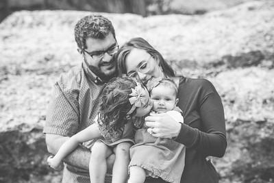 Houshmand Family 2017