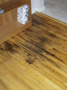 Some older water discoloration in one corner of the living room - should be removable with some work.