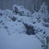 11 am snow (waterfall)