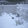 1 pm snow