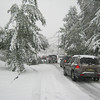 Traffic because of another stuck car (and downed branches)