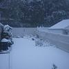11 am snow