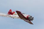AeroshellTwins2,sRGB21x14x300,002083