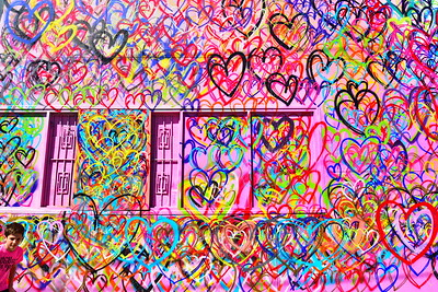 Houstons Wall Murals birdshooter