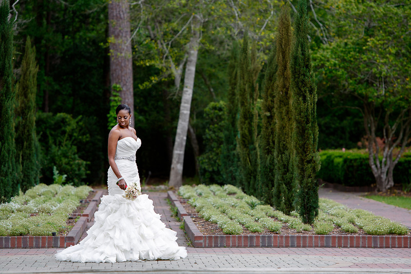 Humble-Bridals-Mercer-Botanic-Gardens-C-Baron-Photo-008