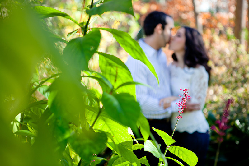 Humble-Engagement-Mercer-Botanic-Gardens-South-Asian-C-Baron-Photo-011