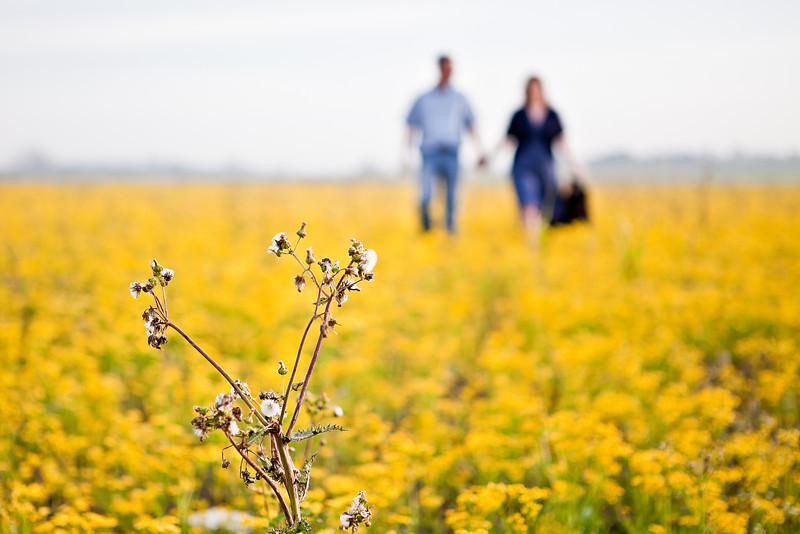 Brenham-Engagement-Wildflowers-Dogs-C-Baron-Photo-002