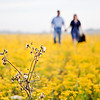 Brenham-Engagement-Wildflowers-Dogs-C-Baron-Photo-002