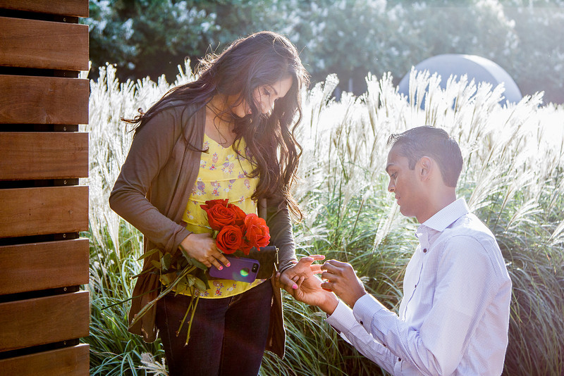 Houston-Engagement-Discovery-Green-Proposal-Indian-C-Baron-Photo-016