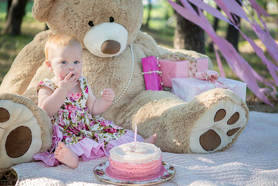 Dallas-Smash-the-Cake-Children-Kids-Portrait-Photographer-C-Baron-Photo-001