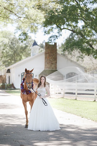 Formal Bridal Session with Bride's Horse at stables in Houston Texas