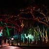 HZI Zoo Lights-9011