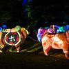 HZI Zoo Lights-9067