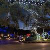 HZI Zoo Lights-8906