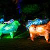 Zoo Lights 2012-0040a-9074