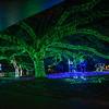 Zoo Lights 2013 - Highlights