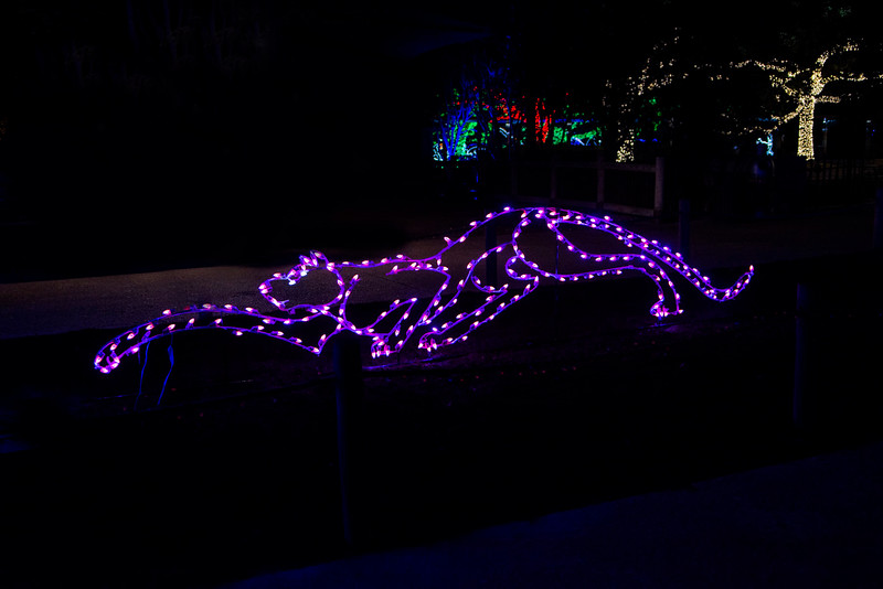 Zoo Lights 2013 - Zoo Friends