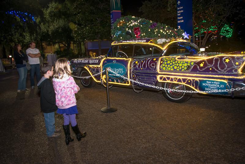 HZI Zoo Lights-VIP-9548