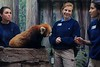Red Panda medical team pays a visit to one of the zoo's stars.